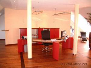 circon executive wing - executive desk - Personality and power in characteristic ambience