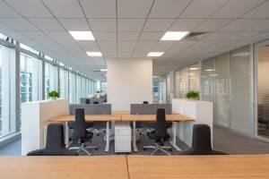 Jungheinrich HQ+SO - Ergonomic Green Bamboo Office