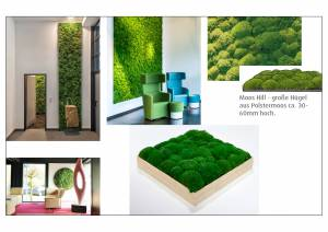 vitAcoustic Acoustic pictures with real moss acoustic cassette with bamboo wood frame and exchangeable highly sound absorbing PET acoustic panels with moss
